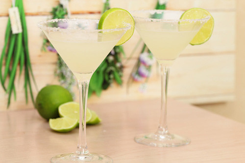 Thermomix Margarita