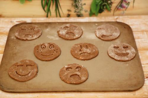 Pampered Chef Lebkuchen-Kekse