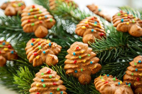 Thermomix Lebkuchen-Kekse