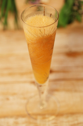 Thermomix Bellini-Sekt-Slush