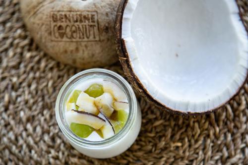 Thermomix veganer Kokos-Joghurt